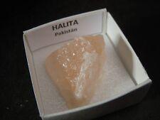 HALITA - Halite -  Pakistan - CAJITA - PAKISTAN MINERAL BOX 4x4 A729