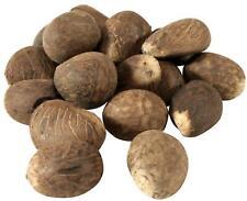 10 X Fair Trade Xl size Tagua Nuts Vegetable Ivory Ecuador Amazonian size >5.7cm