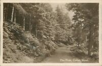 Cofton woods the pines real photo Ince rose cottage tea gardens lickey hills