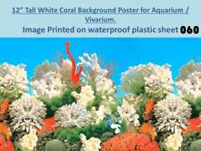 "12"" Tall White Coral Background on Plastic Poster for Aquarium / Vivarium 060"