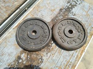 Golds Gym  Weight Plates 10  Pounds x 2  cast iron weight plates 20 lbs total