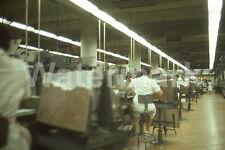1964 L & M Lark Cigarette Factory Workers Richmond VA Original Afga 35mm Slide