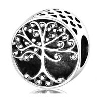 Tree 925 sterling European silver charm bead For silver bangle bracelet necklace