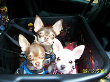 ORIGINAL ZOE DOG CAR SEAT-BIGGEST CARSEAT ON EBAY! MAKES TRAVELING FUN 4 EVERY 1
