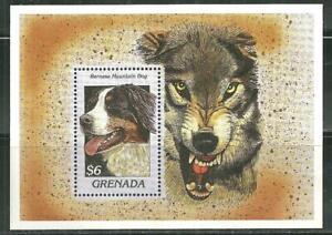 GRENADA 2634 MNH SOUVENIR SHEET BERNESE MOUNTAIN DOG SCV 5.75