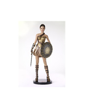 Tonner Wonder Woman Training Armor Deluxe Edition Doll by Tonner Doll