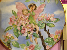FLOWER FAIRY APPLE BLOSSOM VILLEROY & BOCH PLATE CICELY MARY BARKER  HEINRICH