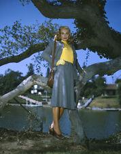 LIZABETH SCOTT glamour photo vivid color vintage ORIGINAL 5x4 Transparency Slide