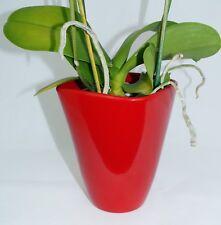 cerámica maceta de orquídea Florero, Cereza Rojo, anguloso, 12cm Ø, MACETA