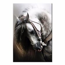 Animal Giclee Canvas Prints Poster Horse Oil Painting Modern Home Wall Art Decor
