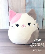 "KellyToy Squishmallow 8"" Karina the Pink & Grey Cat NEW HTF Plush Toy Animal"
