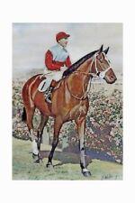 LUCRATIVE winner 1940 VRC Derby, 1941 Sydney Cup modern Digital Photo Postcard