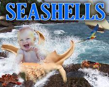C5 SEA SHELL Digital Backgrounds Children Templates fairytale Frame Props