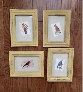 "Framed Reprint Bird Cigarette Cards - 8"" X 6"" - Lot of 4"
