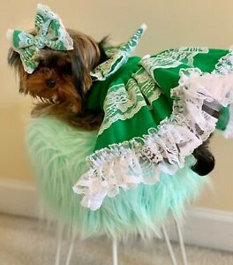 Dog Dress/Harness Green with white lace  FREE SHIPPING