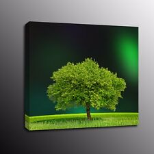 Home Decor Canvas Prints Green Tree Wall Art Oil Painting Picture Poster