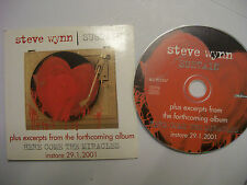 STEVE WYNN Sustain + Excerpts – 2001 EU CD Promo Sampler – Garage Rock - BARGAIN