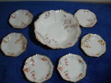 Berry Bowl set 7 pieces from Limoges France