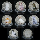 WR 2015 Vanuatu 5 Vatu SILVER Cat Coin Set Souvenirs Animal Collectible Kid Gift