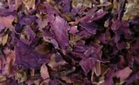 Red Lotus Water Lily Flowers Medicinal Sacred Smells Divine! - Spice Discounters