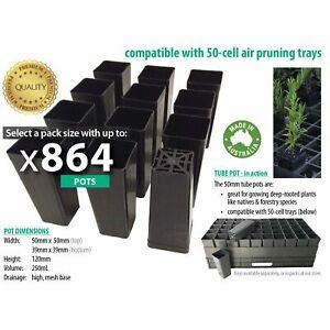50mm Native Square BLACK Plastic Tube Pots, DEEP Tubestock. Forestry propagation