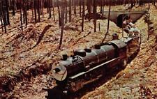 FAIRVIEW, MI Michigan  PINCONNING & BLIND RIVER MINIATURE TRAIN Engine  Postcard
