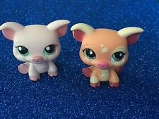 LITTLEST PET SHOP Pig Lot Cute!
