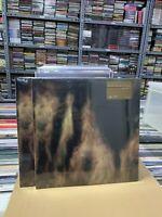 William Basinski 2 LP Lamentations Colored Vinyl Versiegelt 2021