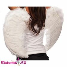 Angel Costume Wings