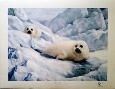 """Charles Fracé """"Peace on Ice""""  Harp Seals print LMT ED S/N (620/5721) COA"""