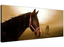 Brown Large Canvas Print of Horse and Foal  - 120cm x 50cm - 1130