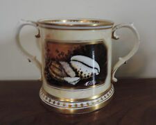 Porcelain Mug Worcester Flight Barr Style Sea Shells Minoprio Derby Faux Marble