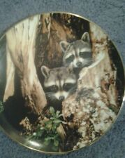 A curious pair collection plate