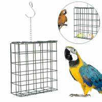 Porta mangime per uccelli pappagallo cincillà conigli criceti Gioco intelligente