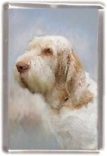 Italian Spinone Fridge Magnet Design No 4 by Starprint