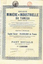 Societe Miniere & Industrielle du Tamega-Action 1925