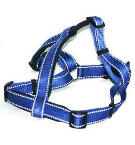 Ancol Padded Reflective Dog Harnesses