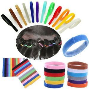 Whelping Bands ID Collars Puppies Kittens Reusable Adjustable 12 colours Medium