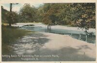 Youngstown OH  Panoramic View of Settling Basin in Lincoln Park  7 13 1917