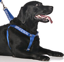 Dogs Pet Strap Harness Non Pull Color Coded Blue SERVICE DOG Training Heavy Duty