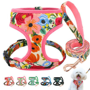 Floral Dog Harness and Lead 5ft Soft Mesh Vest Clothes Small Medium Large Dog
