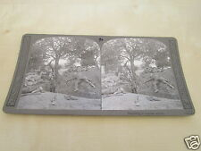 WW1 STEREOVIEW - REPULSING A COUNTER ATTACK