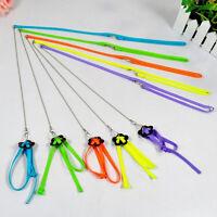 Adjustable Parrot/Bird Animal Harness Multicolor Leash Rope Anti-bite Train ^ RU