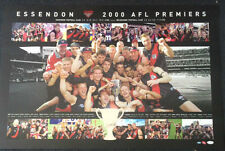 ESSENDON 2000 PREMIERS GRAND FINAL LIMITED EDITION AFL PRINT HIRD LLOYD SHEEDY