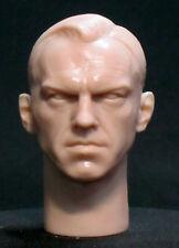 "CUSTOM Hugo Weaving ""RED SKULL, MATRIX"" HEAD SCULPT.  1/6 scale. 12"" H-56"
