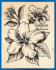 Rare PSX Hibiscus Botanical Rubber Stamp K-1561 - Flower with Scientific Name