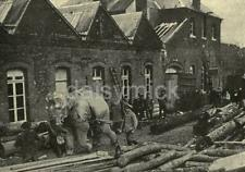 German Army Troops & Elephant Hauling Timber World War 1 7x5 Inch Reprint Photo