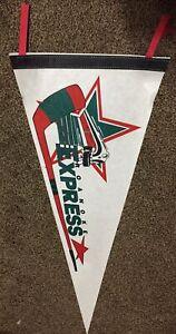 Roanoke Express Hockey  Felt Pennant 1990's Vintage