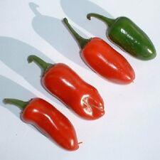 Pepper 'Jalapeno M' / Popular medium hot chilli pepper / Seeds