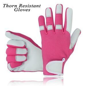 Thorn Proof Resistant Gloves Gardening Ladies Women Girls Work Mechanic Field UK